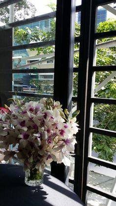 방콕의 오후 햇살