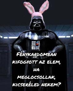 Funny Memes, Jokes, Everything Funny, Star Wars Humor, Like A Boss, Funny Photos, Haha, Darth Vader, Bunny