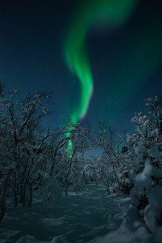 Auroras by Bernt Olsen on December 28, 2017 @ Birtavarre, Troms, Norway