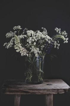 Queen Anne's lace, white freesia, Veronica flower and foliage Ikebana, Fotografia Floral, White Flowers, Beautiful Flowers, Exotic Flowers, Fresh Flowers, Purple Flowers, Queen Annes Lace, Deco Floral