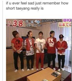 LMAO! XD poor taeyang