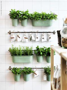 Dekorera med kryddor och växter och ge köket en fräsch och somrig känsla. Utnyttja en tom yta på väggen för att ge liv åt rummet! Krukorna FINTORP i grönt är härliga att inreda med.