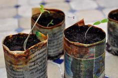 TUTO : Faire des godets ou des pots à semis en papier journal