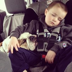 All tuckered out after #GoodBoyBlue book signing with Master Everett