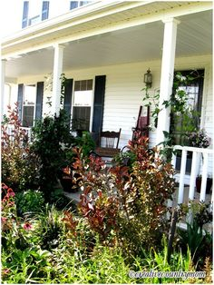 Welcome, my name is Brooke Kroeger and can easliy say I live my life in a garden. I just love beautiful things. I am an avid gardener and collect vintage roses and cottage style flowers. I share my own garden at my Creative Country Mom website, http://creativecountrymom.blogspot.com