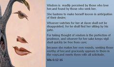 What wisdom may look like