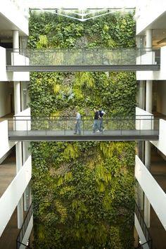 Indoor vertical garden - @sundaritaliasrl