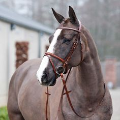 The Horze Benton Snaffle Bridle features a flash noseband adding comfort and a half round crown design with soft lining which releases pressure on the horse's neck. A stunning row of faux diamonds emb
