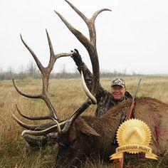 Estate Elk hunts in Saskatchewan, Canada