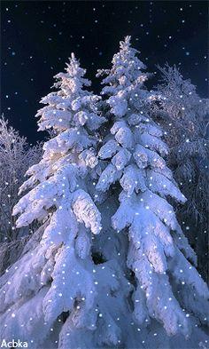 Christmas Scenes, Blue Christmas, Beautiful Christmas, Winter Christmas, Christmas Time, Merry Christmas, Winter Love, Winter Art, Christmas Wonderland
