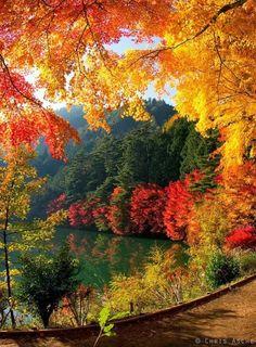 The Autumn Equinox