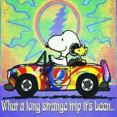 ☮ American Hippie ☮ Snoopy and Woodstock. Grateful Dead Poster, Grateful Dead Bears, Grateful Dead Quotes, Hippie Style, Hippie Chick, Mickey Mouse, Snoopy Quotes, Peanuts Quotes, Cartoon Quotes