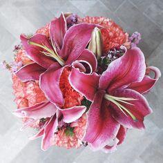 Crimson lilies at Te Amo Floristeria