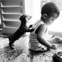 { Puppy love }