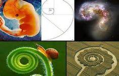 fibonacci ocean