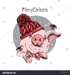 Christmas card. Portrait of the pink Pig in a red knitted cap, bow tie and with a birds on a gray background. Vector illustration.