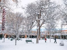 Warm Up in the Southwest: Why You Should Visit Santa Fe in the Winter Sante Fe New Mexico, Chocolate House, Visit Santa, Canyon Road, New Mexican, Fes, Santa Fe, Installation Art, Unique Art
