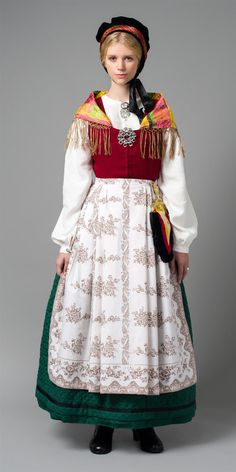 FolkCostume&Embroidery: Overview of Norwegian costume, part 4 The North Folk Costume, Costume Dress, Norwegian Clothing, Native Wears, Costumes Around The World, Frozen Costume, Group Costumes, Ethnic Fashion, Traditional Dresses