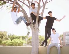 CNCO without zabdiel Harley Quin, Latin Music, Find Picture, Cute Guys, Boy Bands, Photo And Video, Animals, Reyes, Artists