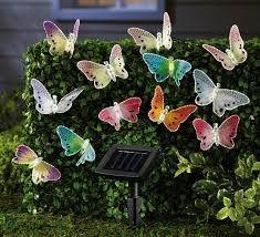 Image result for garden solar lights