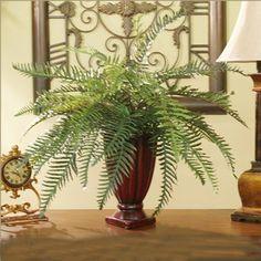 Fern in Vase - Silk Plant