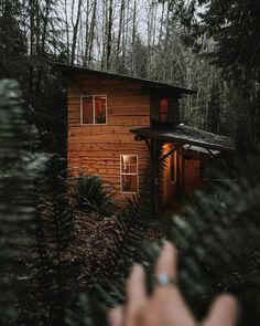 "7,118 Likes, 49 Comments - Cabin Love (@cabinlove) on Instagram: ""Always waiting. #cabinlove pic by @lms_photo"""