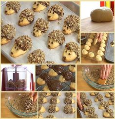 Hedgehog Biscuits - for the biscuit it's just flour, butter, powdered sugar and 1 egg yolk and for the decoration it's just melted chocolate and toasted chopped nuts (or shredded coconut if preferred). These next sweets are called Hedgehog Biscuits, and t Cake Cookies, Cookies Et Biscuits, Cupcakes, Shortbread Cookies, Cute Food, Yummy Food, Hedgehog Cookies, Cookie Recipes, Dessert Recipes