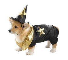 Woof Wizard Costume
