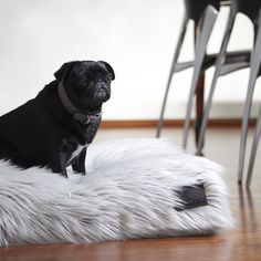"""""""The fluffiness of my new bed satisfies my bottom."""""""