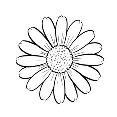 Adult Coloring Pages Sunflower from Printable Sunflower Coloring Pages. This funny sunflower shines all over your face. What she is missing now are bright colors. But you can certainly help her with that. Just print out th. Sunflower Coloring Pages, Fall Coloring Pages, Adult Coloring Pages, Coloring Books, Daisy Drawing, Sunflower Drawing, Sunflower Colors, Sunflower Art, Art Sketches