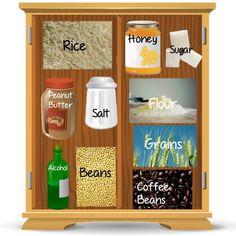 basic survival food