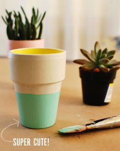 Color Block Terra Cotta Pots DIY