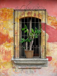 Window.  Antigua Guatemala.