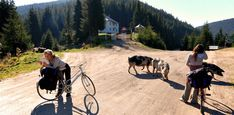 Planning a bike tour? This article will help you a lot. Check this out.