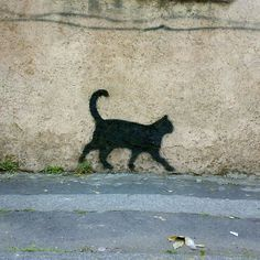 Little Cat Streetart