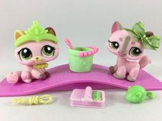 Littlest Pet Shop Cute Pink Kitten #1489 & Pink Cat #1326 w/Accessories #Hasbro
