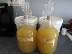 Making fruit meads: Peach and Pineapple