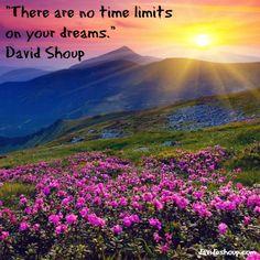 Inspirational Quotes | David Shoup #inspiration #davidshoup #quotes #notimelimits #dreams