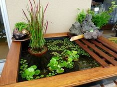 48 Brilliant Indoor Fish Pond Design Ideas For Small Spaces To Have Patio Pond, Diy Pond, Pond Landscaping, Small Water Gardens, Fish Pond Gardens, Container Pond, Container Water Gardens, Outdoor Water Features, Pond Water Features