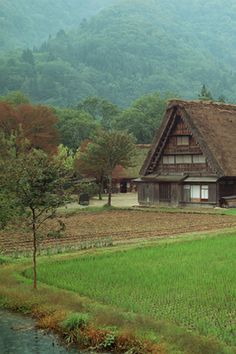 Japanese Farmhouse.  the place to see this style of house seems to have beee limited lately.  #satoyama #countryside #japan