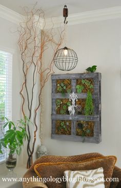 Anythingology: Vertical Gardening - The Experiment