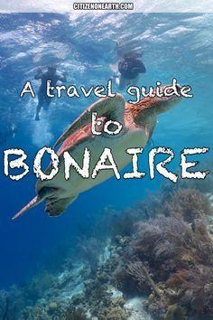 A travel guide to Bonaire - Dutch Antilles - Caribbean