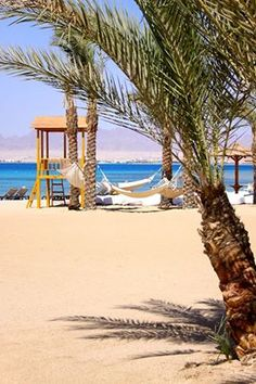 Settle down in a beach hammock at Robinson this afternoon. Robinson Club, Hammock, Beach, The Beach, Beaches, Hammocks, Hammock Bed