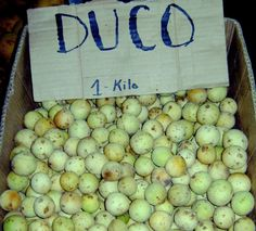 Lanzones (Duco farm) fruits from Calinan, Southern Davao, PH (RS)