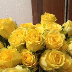 Առաքում ենք արևային տրամադրություն: We deliver sunny mood! Поставляем солнечное настроение! Nous delivrons l'humeur du soleil! garun.am #գարունամ #գարուն #ծաղիկների #առաքում #Երևան #Հայաստան #tsaghikneri #araqum #garunam #spring #flower #delivery #Yerevan #Armenia #гарунам #весна #доставка #цветов #Ереван #Армения #printemps #livraison #fleurs #Erevan #Arménie