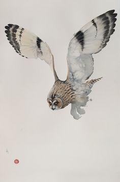 Karl Martens, Short Eared Owl | Cricket Fine Art