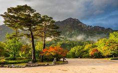 🌍 Национальный парк Сораксан (г. Сокчо)  Национальный парк Сораксан – это уютный уголок природы. Путешественники, не решившие, что посетить в Южной Корее, могут смело отправляться именно сюда, чтобы насладиться невероятными пейзажами. Парк прославился на весь мир своими водопадами и гейзерами. Не остались без внимания буддистские храмы, которым насчитывается не одно столетие. Занимательно то, что для этой достопримечательности Южной Кореи была выделена территория сразу в четырех соседних…