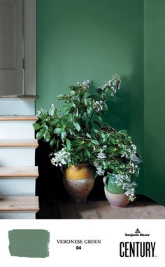 Breezy flowers in vintage clay pots set against VERONESE GREEN O4, CENTURY Soft Touch Matte painted walls offer a warm welcome next to a doorway. #ExperienceCENTURY #BenjaminMoore