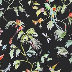 Classic Bird Of Nature Black And Green Wallpaper | Walls Republic