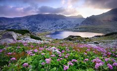 Natural Dilaudid Spring Discovered in Alps; Drug Seekers Scramble for Climbing Gear, Airline Tickets Beautiful World, Beautiful Places, Karpathos, Lake Mountain, Airline Tickets, Scotland Travel, Alps, Romania, National Parks